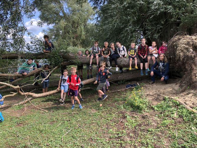 Rangerkamp 12-16 augustus 2019