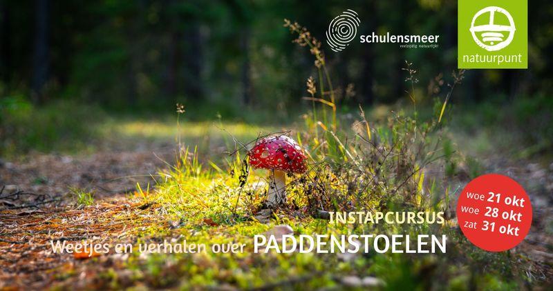 Cursus Weetjes en verhalen over paddenstoelen (3 sessies) - Sessie 3